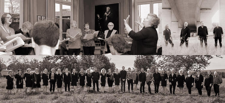 toon hermans koor baltus en co sing a song Hazeler Paorte
